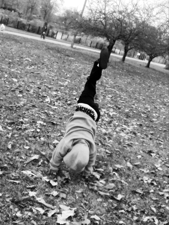 Flipping in the park