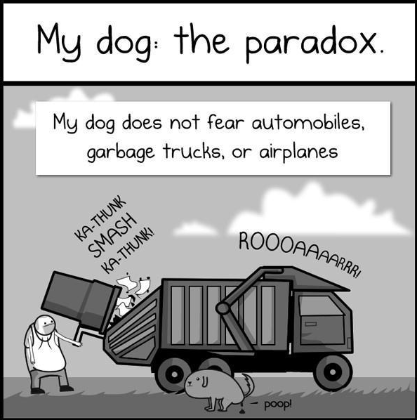 My Dog the paradox